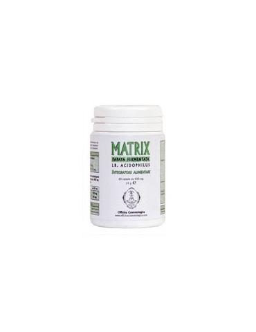MATRIX Suplemento Alimenticio Papaya Fermentado y Lb AcidophilusFood Suplementos Cosmetológicos Taller